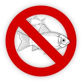 No FISHING!!